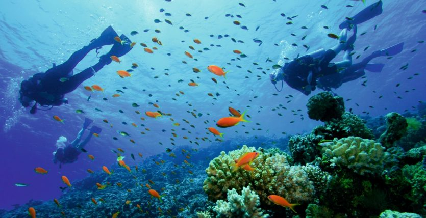 Scuba Tours PADI Dive Centre, Sunset Beach Club, Malaga, Spain